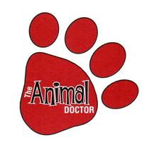 The Animal Doctor of Camden Logo